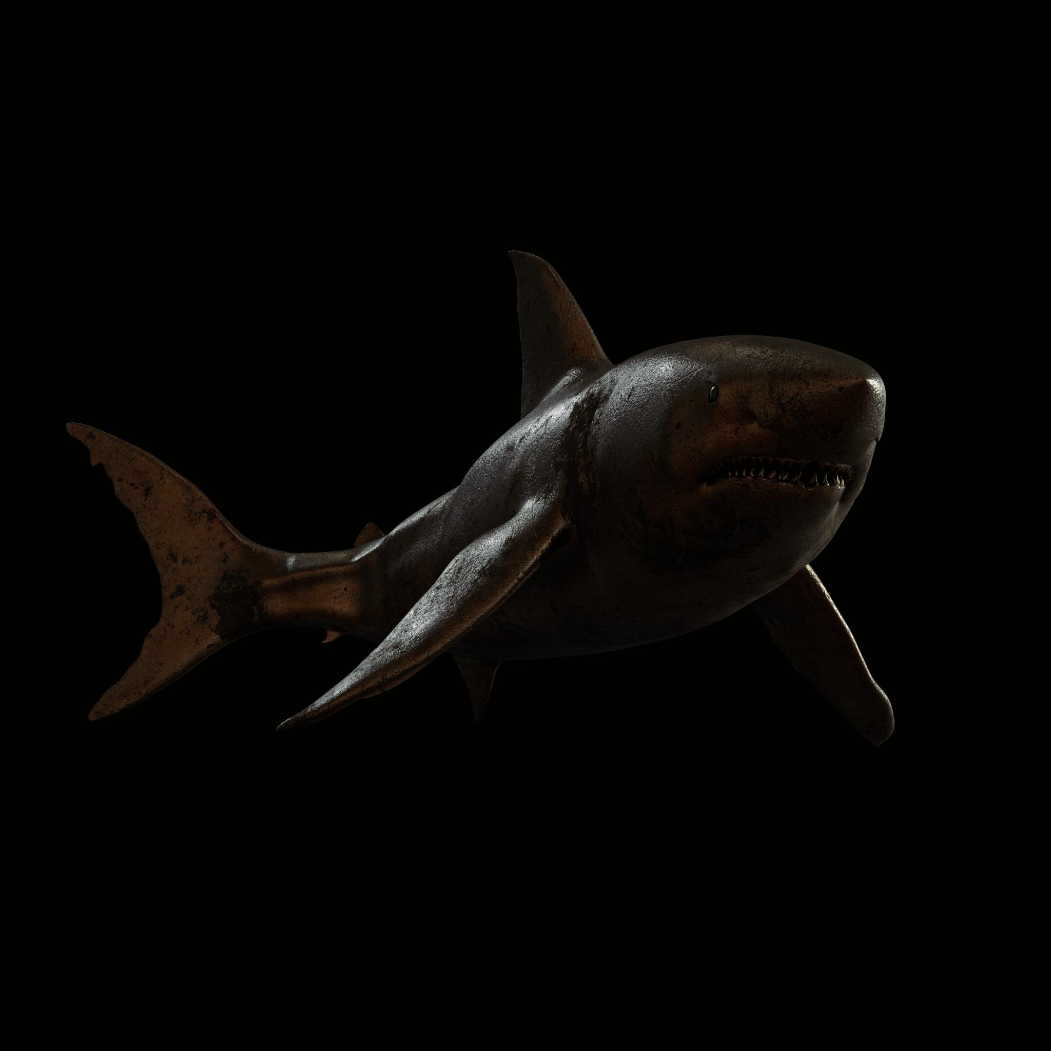 PAN_Shark_WIP02.jpg