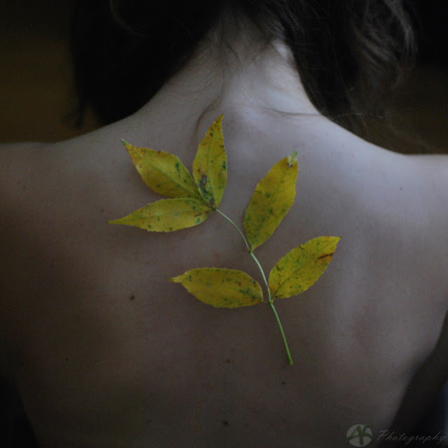 Self: Fall 2012