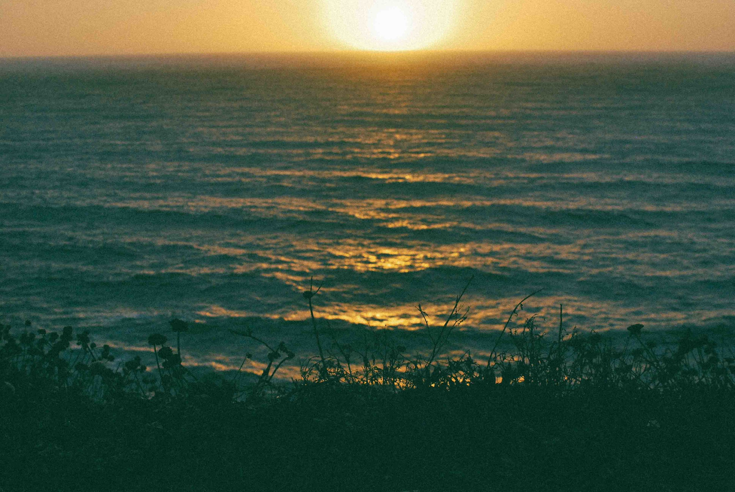 Cali33_SanFran_SunsetWeb.jpg