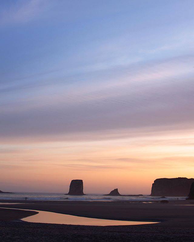 When the sunset looks like a painting 😍 I can't believe I waited so long to camp at/visit Second Beach- this was the view from our campsite! I'm gonna def spend part of winter planning next summer's trips to more of WA beaches. I'd love recommendations- if you have a fav beach, please let me know!