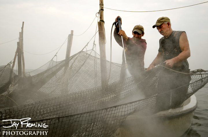 Cleaning a pound net after a season of fishing