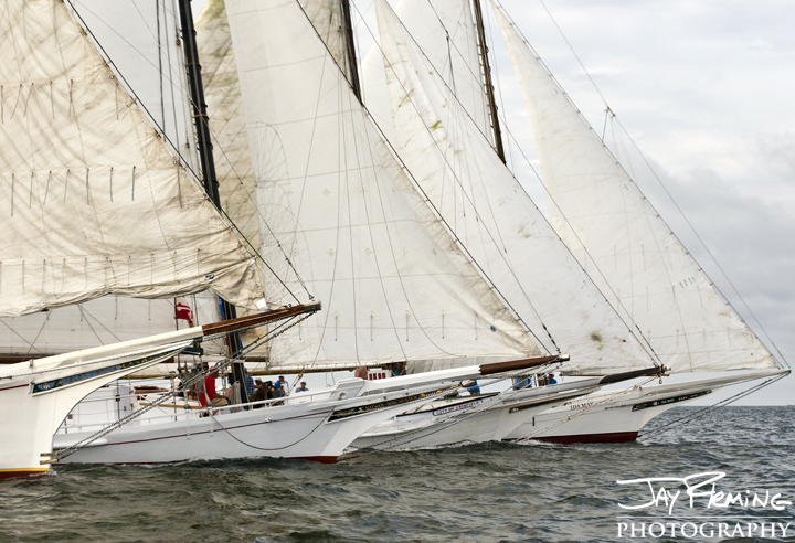 2014 Skipjack Races. Deal Island, Maryland