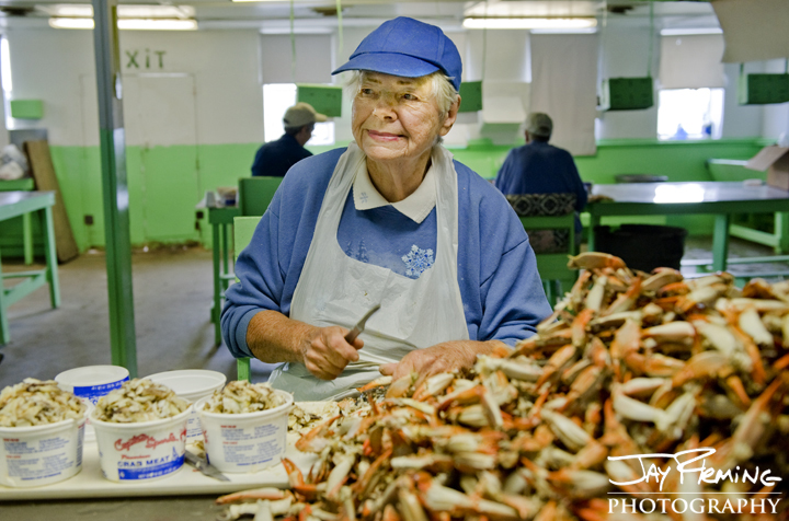 Betty Tall, 81, picking crabs at Dorchester Crab Co. in Wingate, Maryland. October 2014