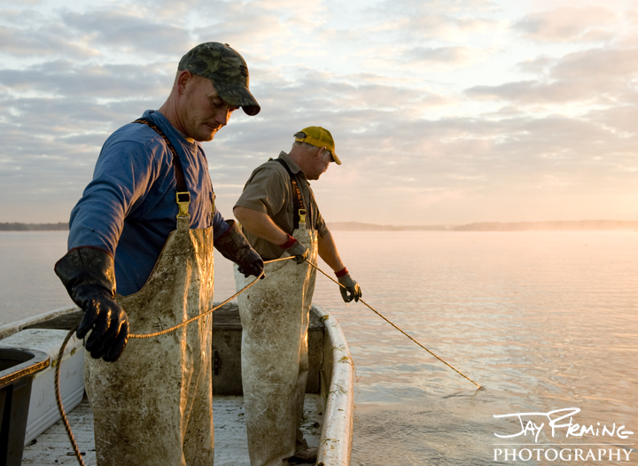 Father-Son watermen pulling pots for Blue Catfish on the Potomac River. September 2014