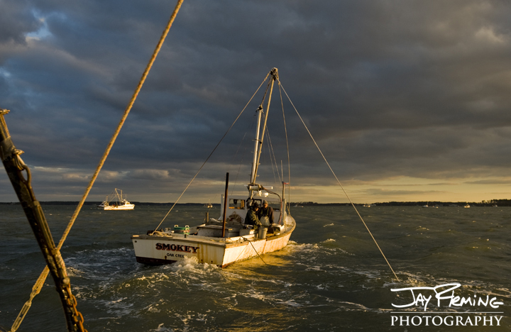 Dredging for oysters. Broad Creek, Maryland