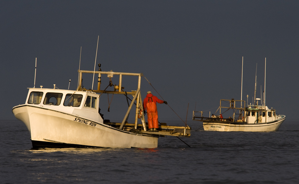 Crab Dredge Boats Delaware Bay Maggie S. Myers © Jay Fleming.jpg