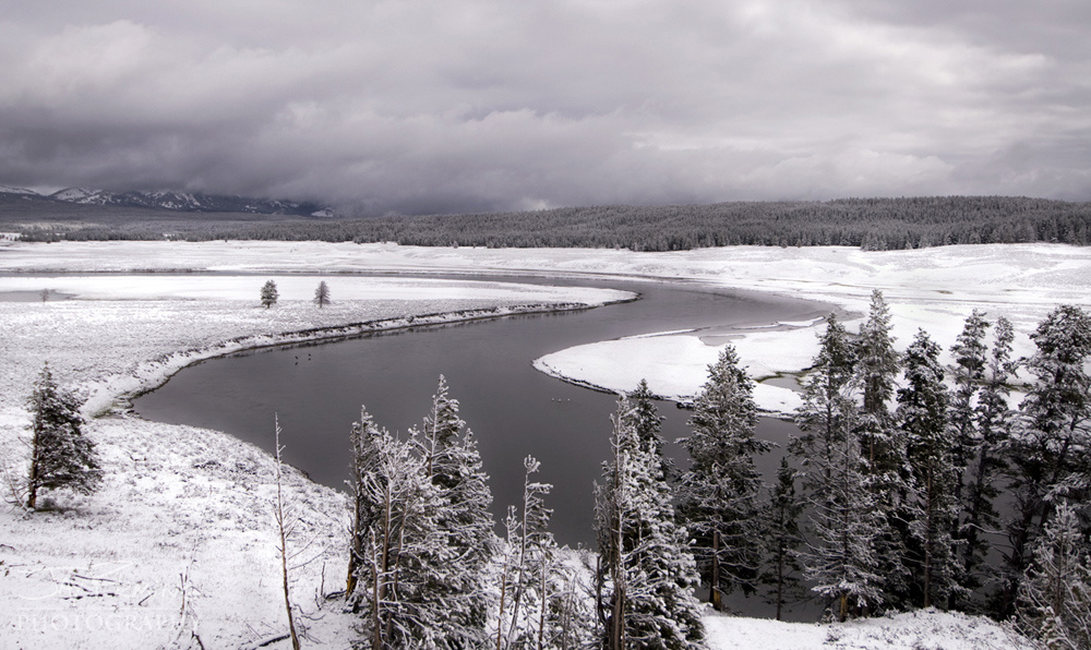 Yellowstone Portfolio © Jay Fleming 33.jpg