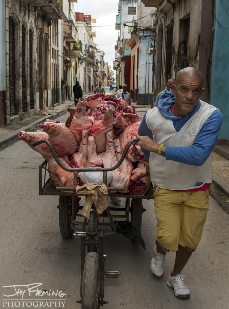 Hauling pig carcasses through the streets of Havana by tricycle.