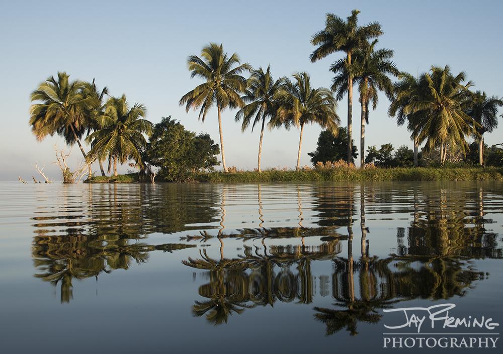 Reflections on Laguna del Tesoro as we left Boca Guama for Playa Larga