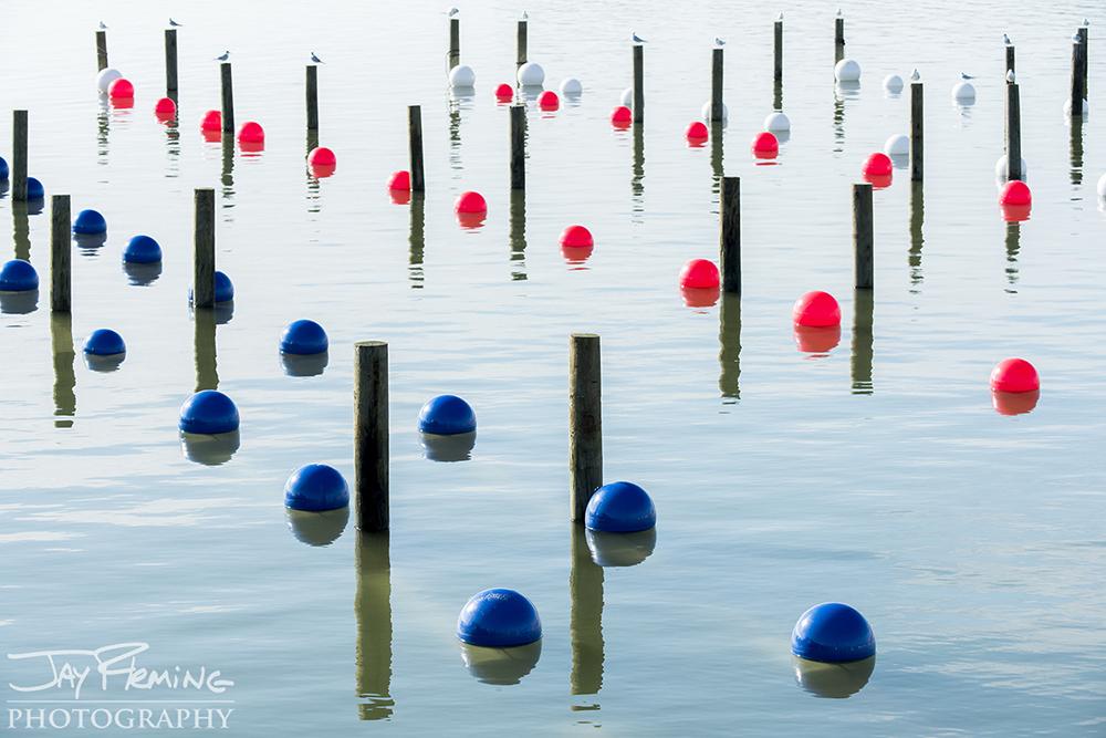 Hoopers Island© Jay Fleming01.jpg