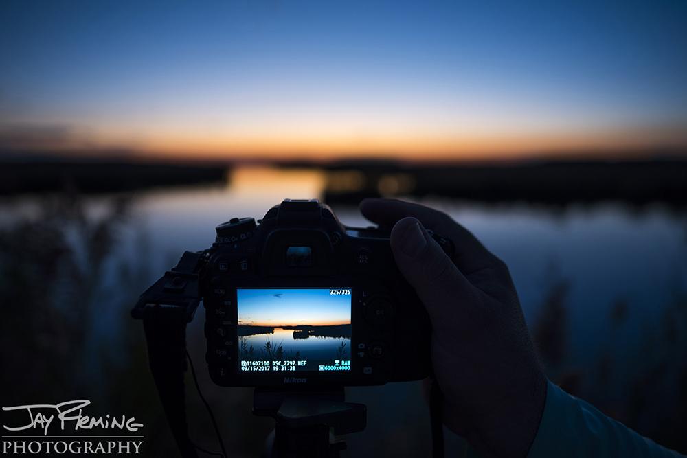 Hoopers Island© Jay Fleming06.jpg