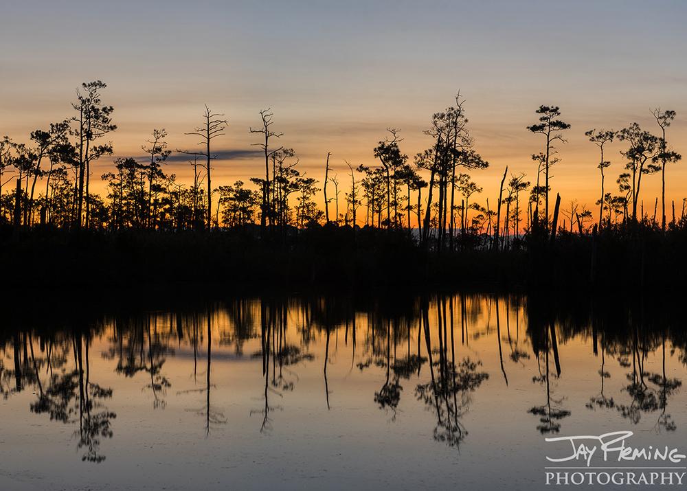 Hoopers Island© Jay Fleming12.jpg