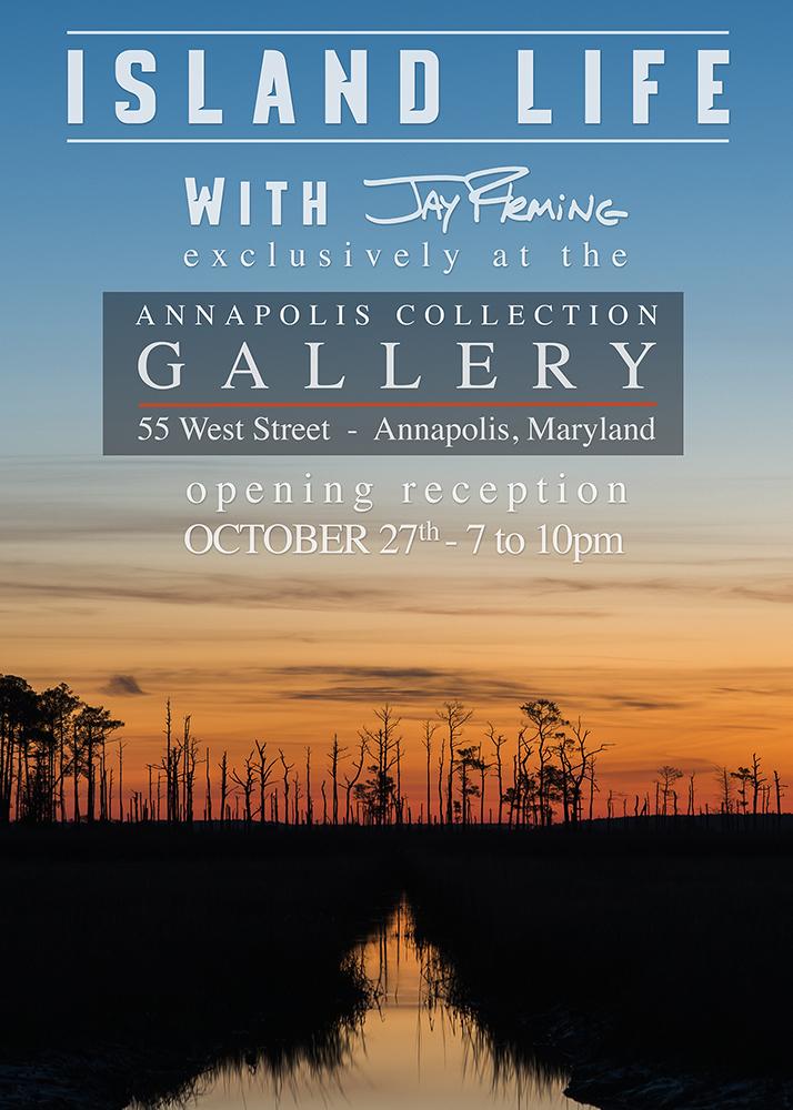 October 27th - Island Life Reception.jpg