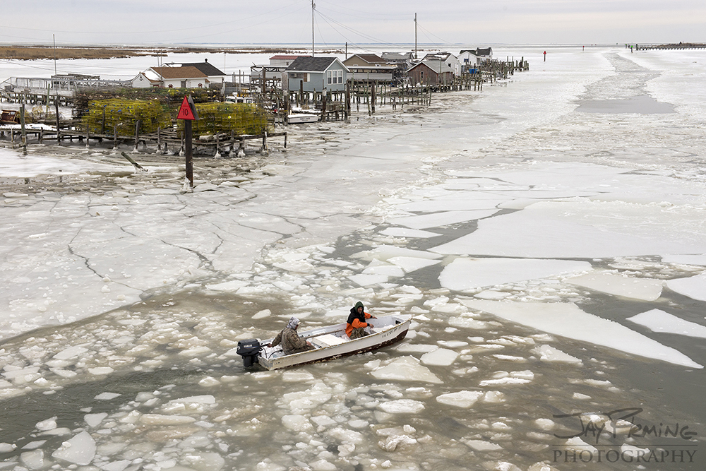 2015 Chesapeake Bay Ice  - © Jay Fleming 04.jpg