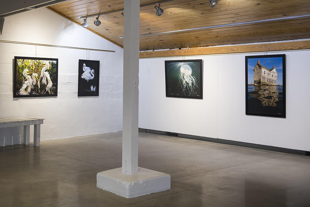 Jay Fleming Exhibit - AMM  -  © Jay Fleming  - 03.jpg
