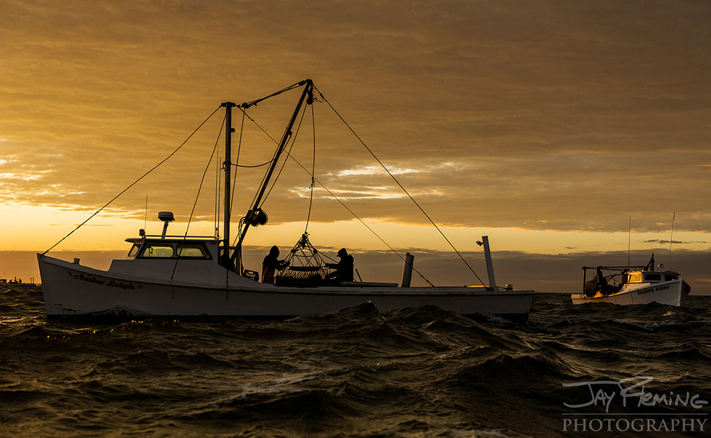 Amber Leigh  and  Elizabeth Ashby  dredging for oysters at first light near Tangier Light in 'Area 1'