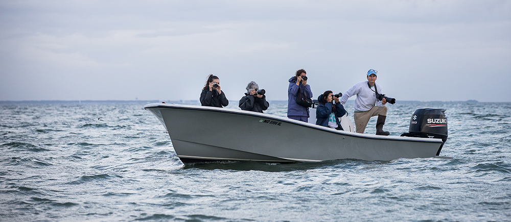 Shooting from the skiff in Back Cove, one of the islands most productive oystering and crabbing grounds.