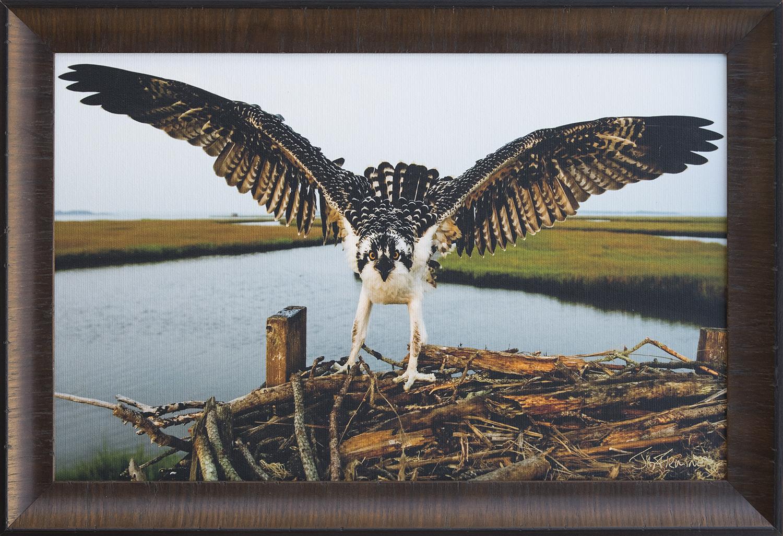 Custom Framed Canvas Print- © Jay Fleming19.jpg