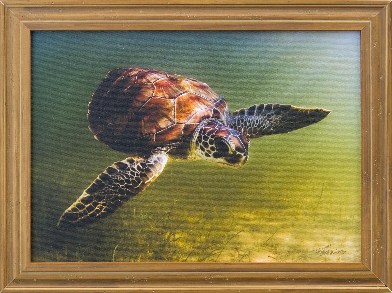 Custom Framed Canvas Print- © Jay Fleming25.jpg