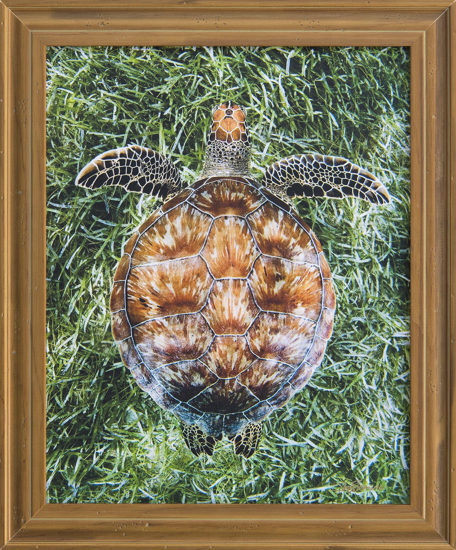 Custom Framed Canvas Print- © Jay Fleming26.jpg