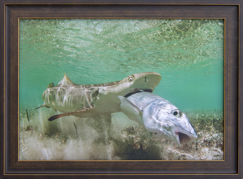 Custom Framed Canvas Print- © Jay Fleming29.jpg