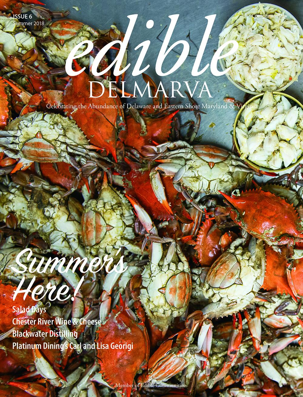 EDMV 6 Cover.jpg