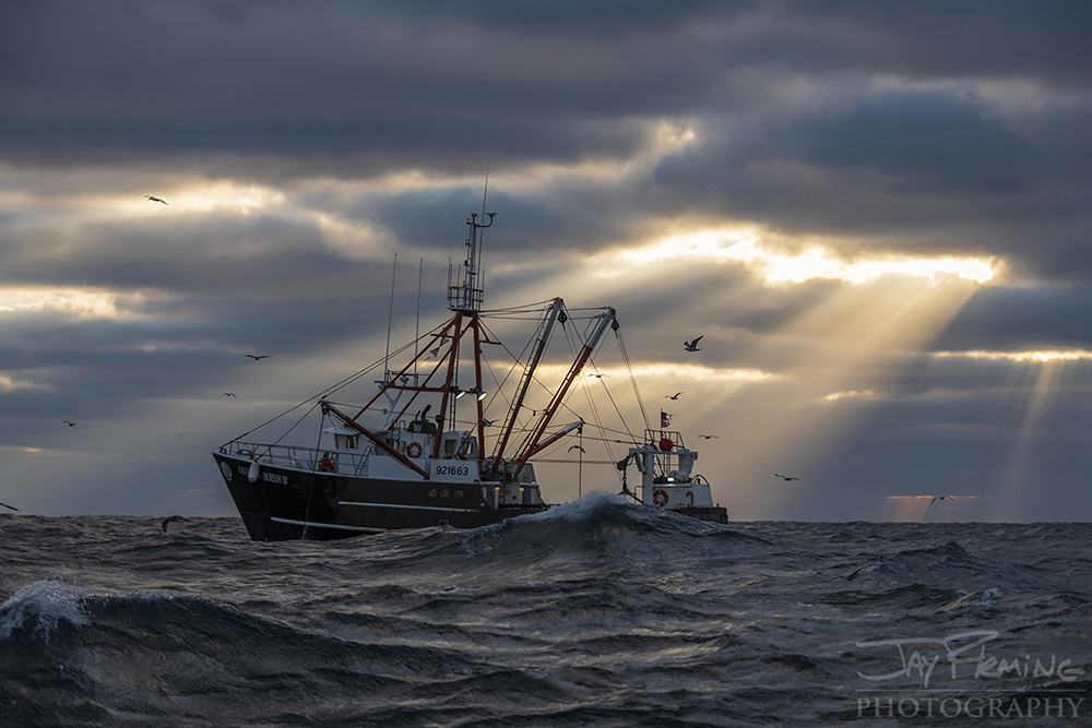 Scallop Industry © Jay Fleming - 29.jpg