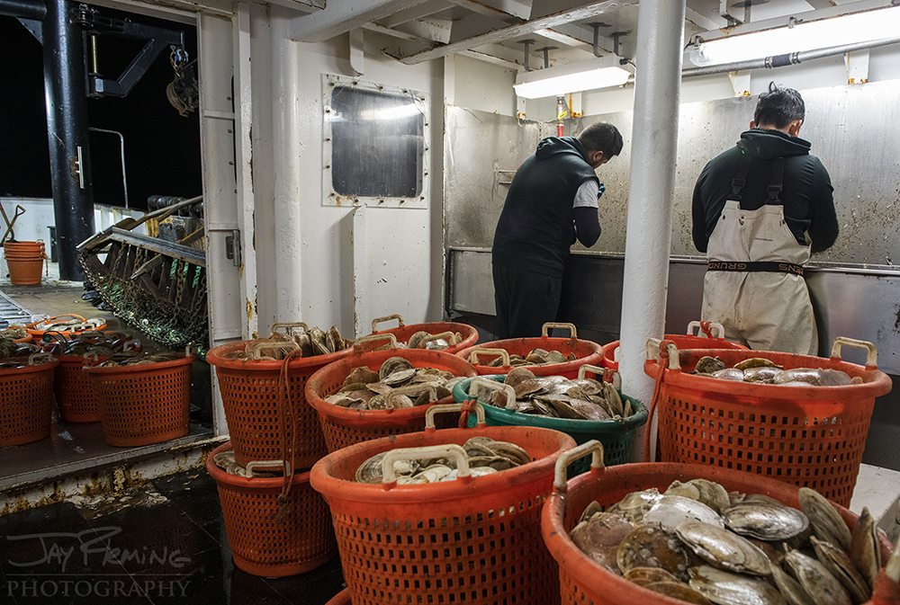 Scallop Industry © Jay Fleming - 33.jpg