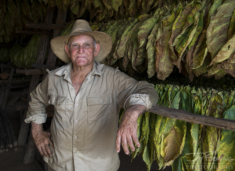 Portrait of Rolando Lopez Ordaz inside of the family's tobacco barn. Rolando is 73 years old and works the land with his two sons, Rolian and Rolando and his grandson, Daniel.
