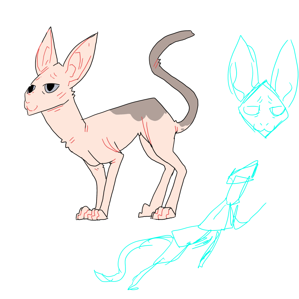 rattailredesign.png