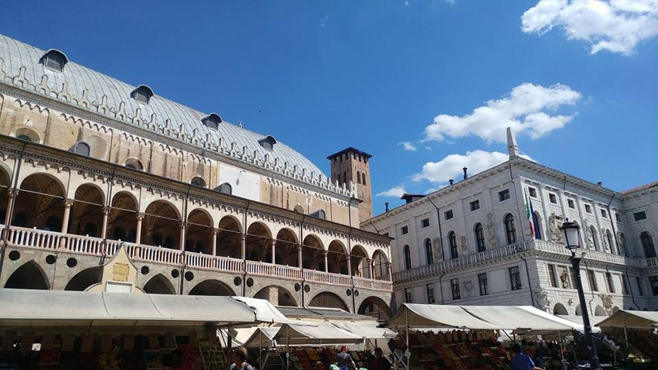 Mercato-di-Piazza-delle-Erbe-Padova.jpg