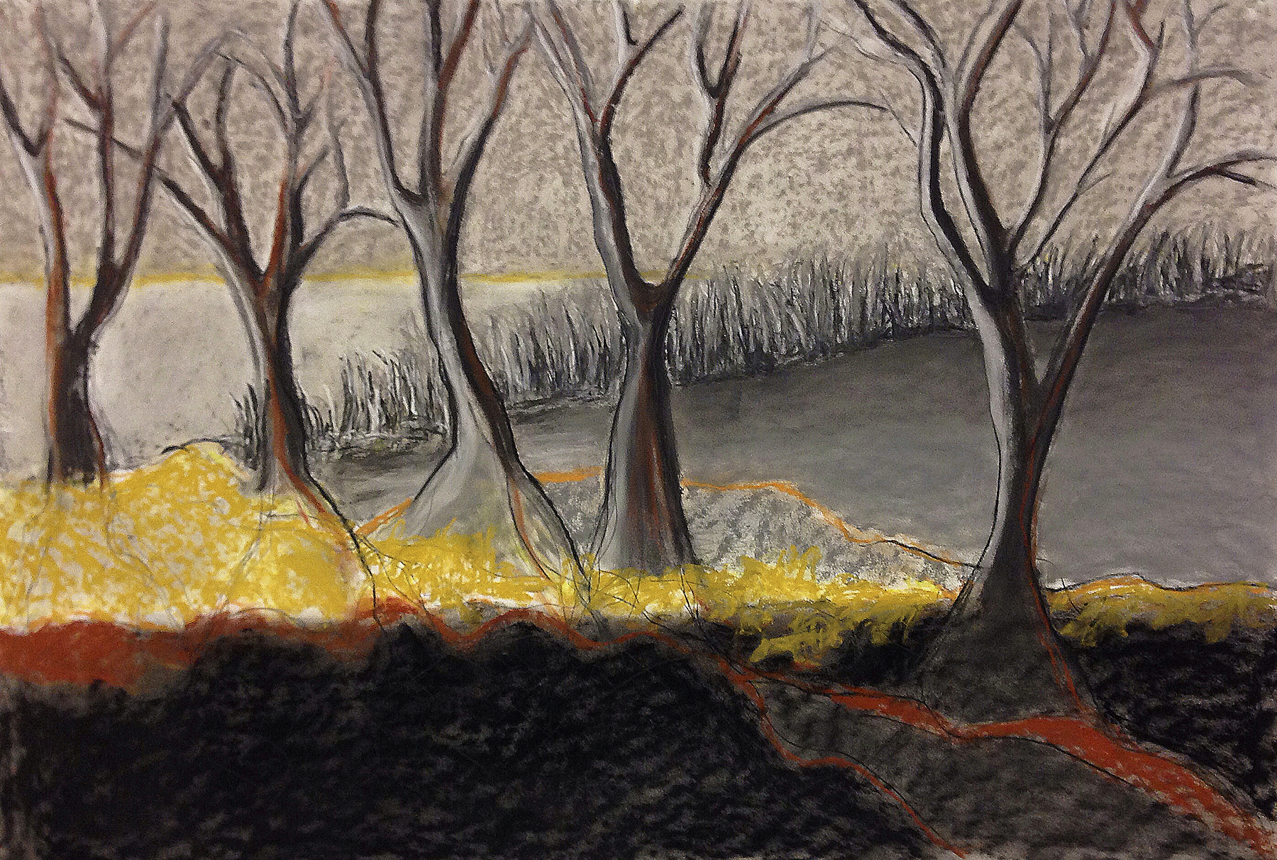 Scout K. Austin  and Kellie Weeks,  Untitled No. 14,   pastel and charcoal, 44 x 30 in., $600.00