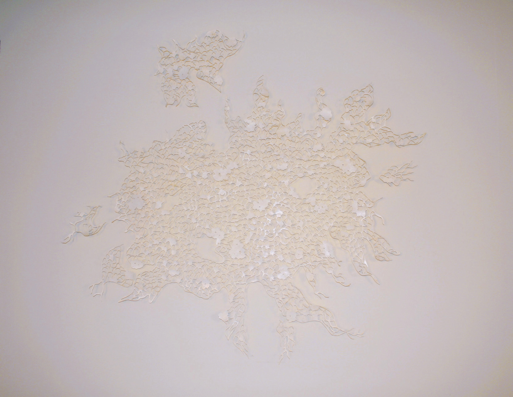 Visible Absence , acrylic on cut Tyvek, 6' x 8' (approx.)
