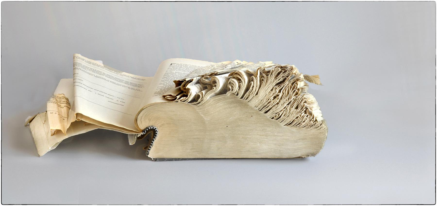 Timothy Wilson,  Frayed Dictionary , Photograph, 12x21