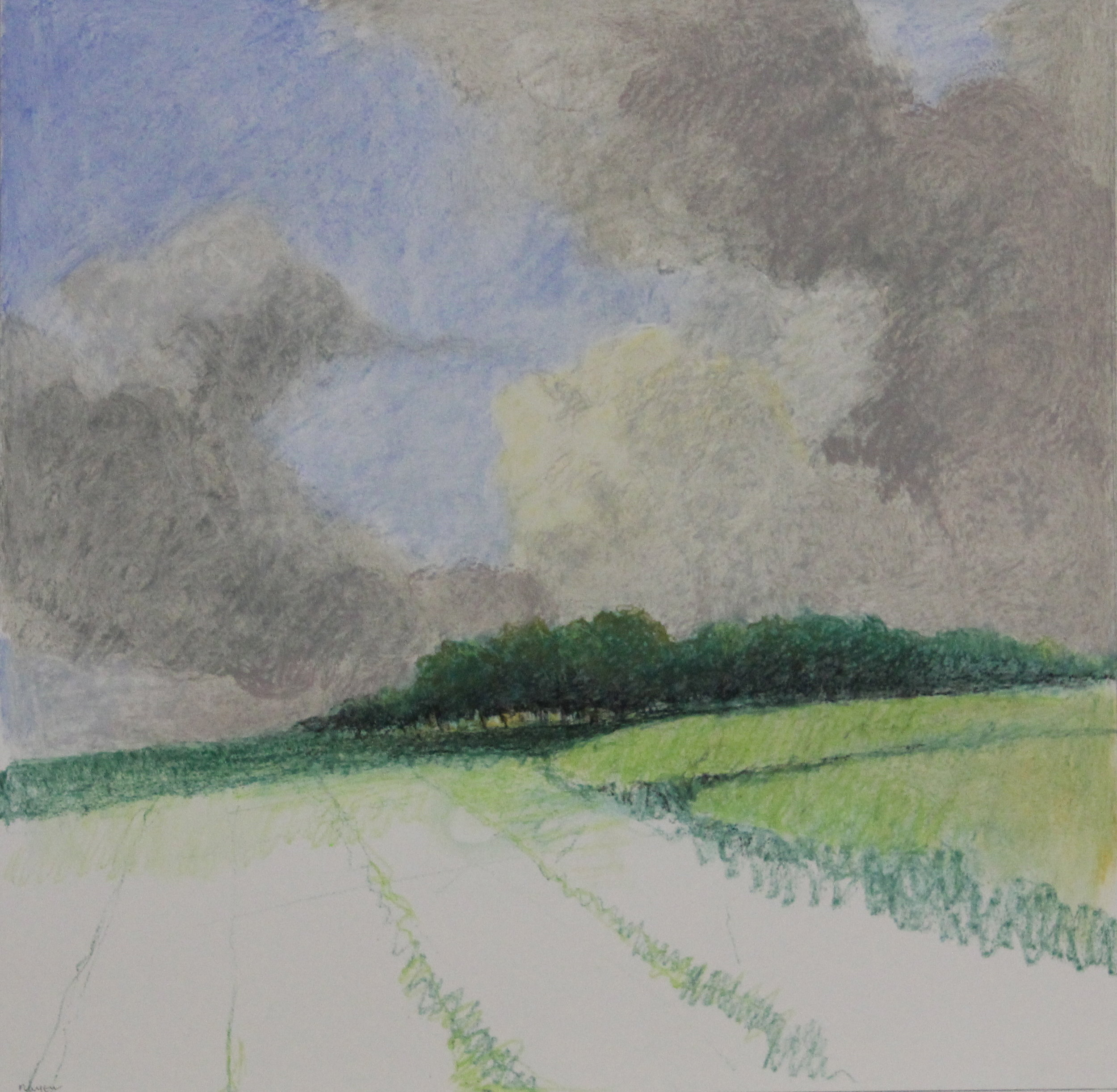 Untitled pastel no.7- 17x16.5%22.JPG