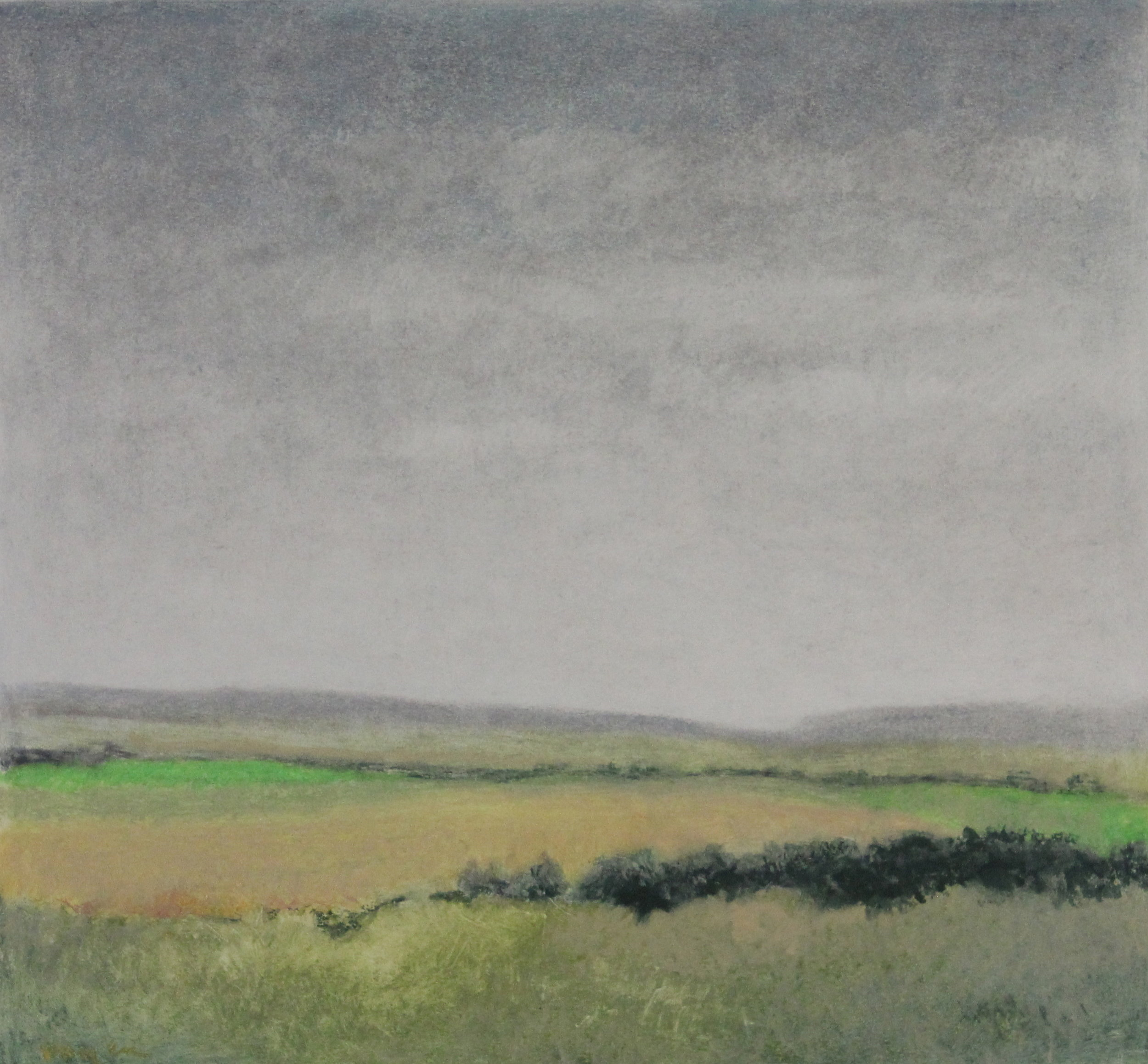 Untitled pastel on paper no.1- 17x16%22.JPG