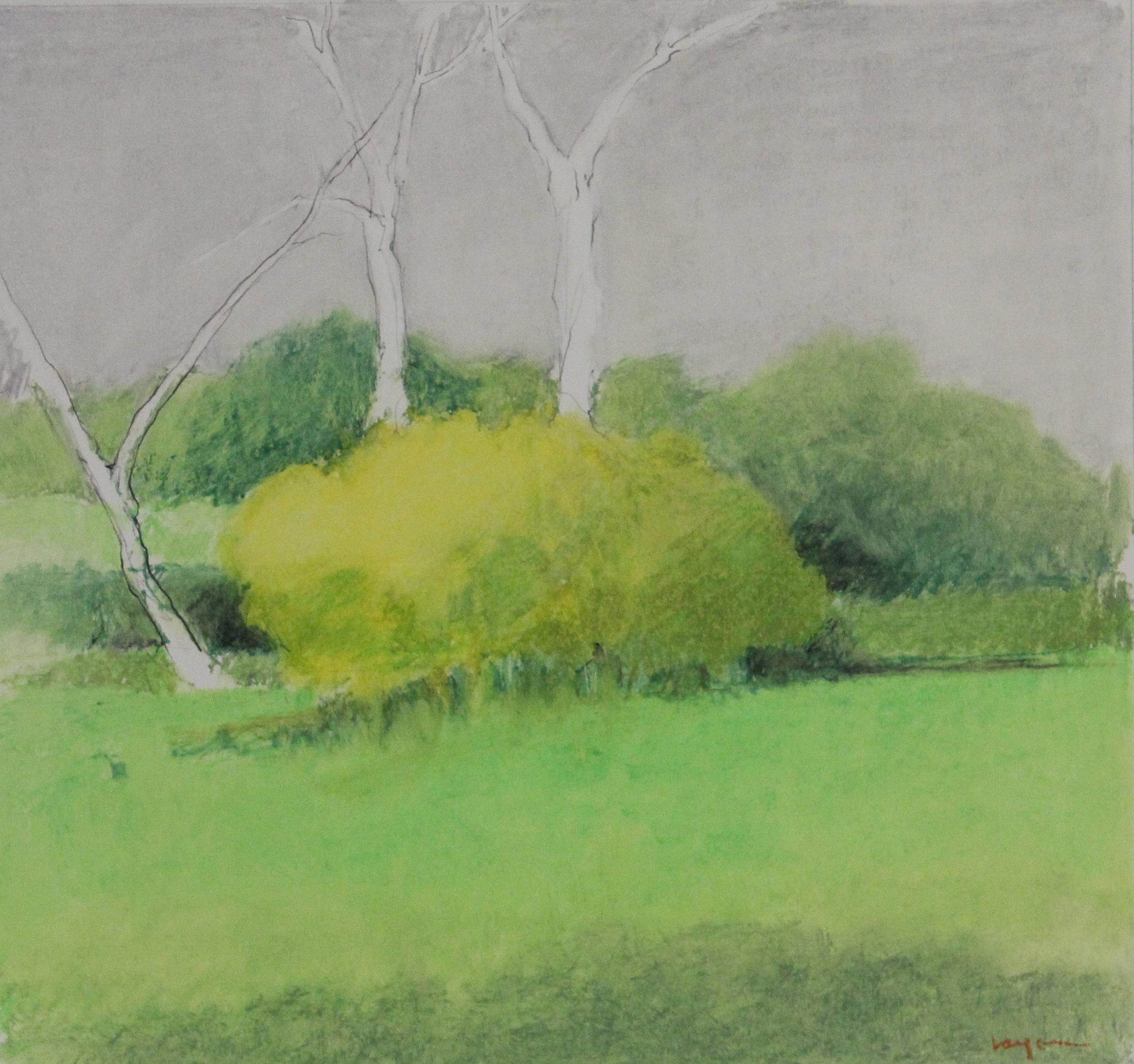 Untitled pastel on paper no.6- 17x15%22.JPG