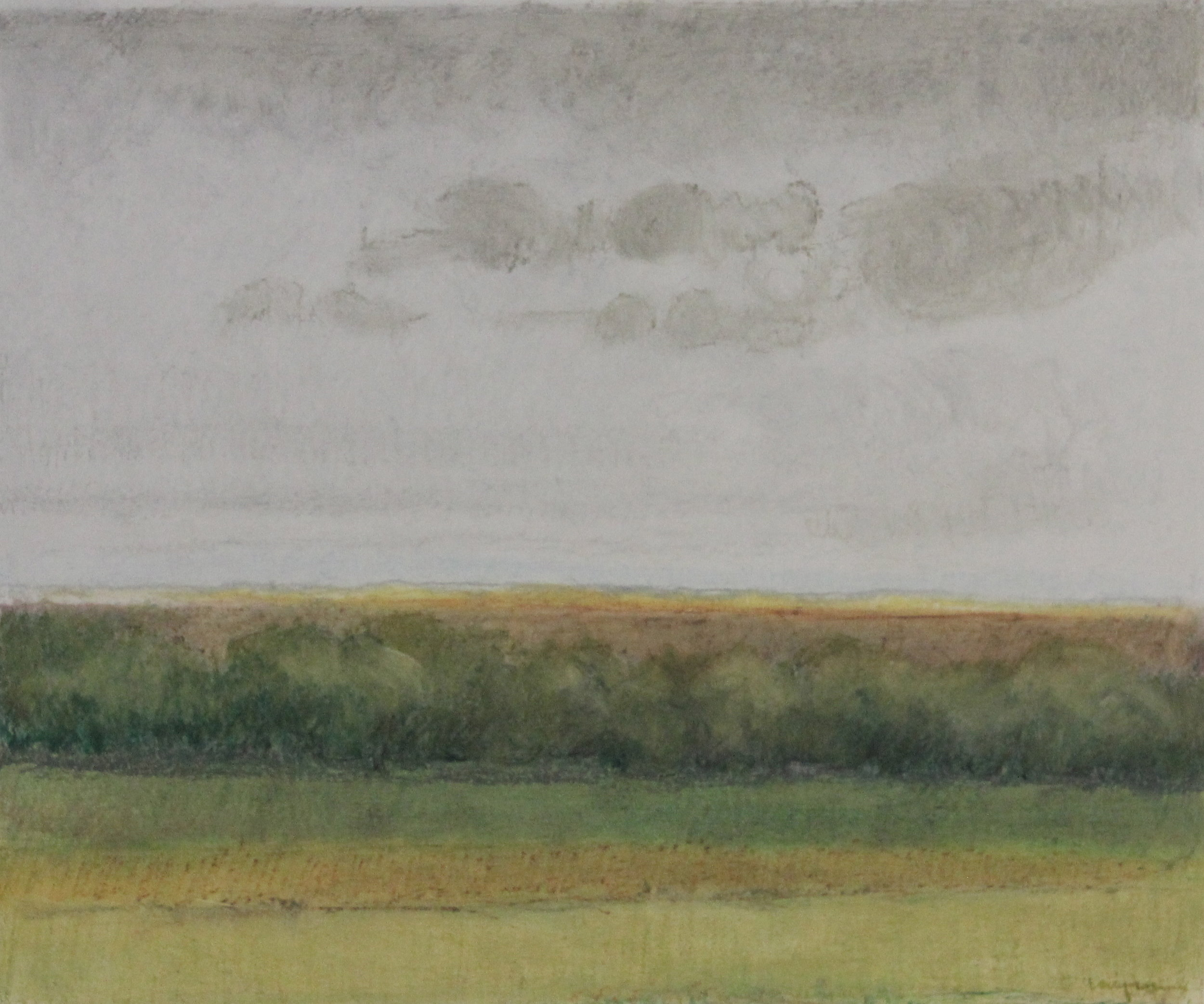 Untitled pastel on paper no.8- 18x15%22 .JPG