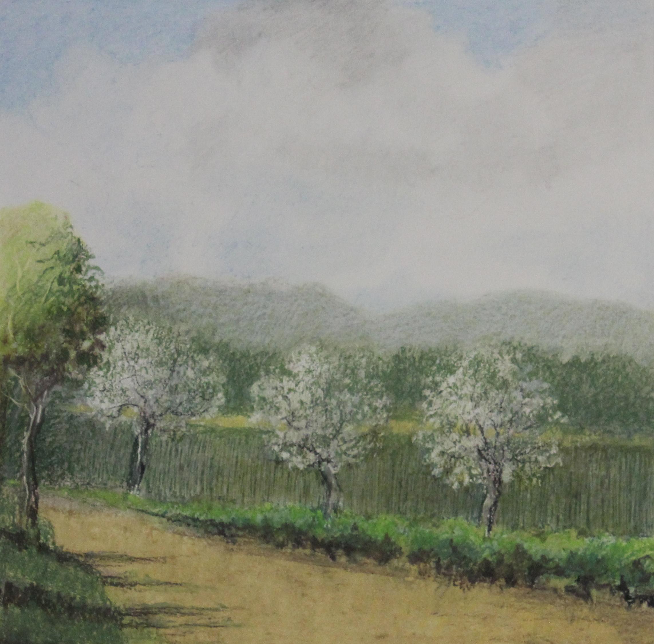 Untitled pastel on paper no.9- 15x15%22.JPG
