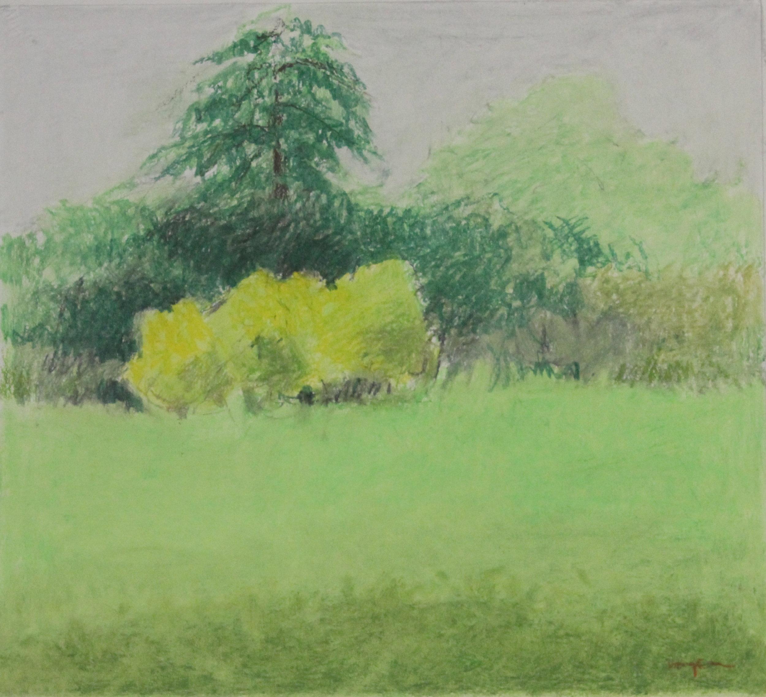 Untitled pastel on paper no.10- 19.5x18%22 .JPG