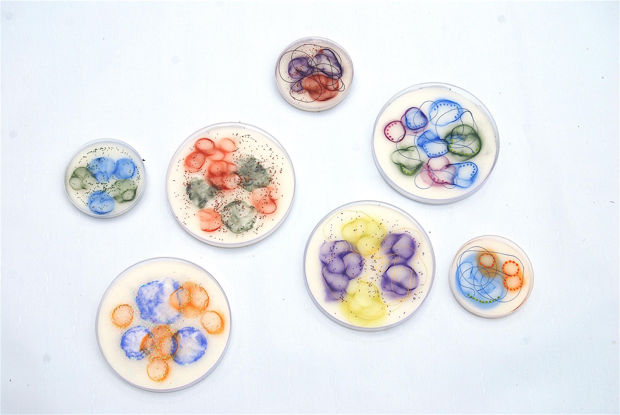 "Hartung,  Cell Samples ,  Grouping 1,   Encaustic, pastel, petri dish, thread, glass balls, 4"" diameter, 6"" diameter"