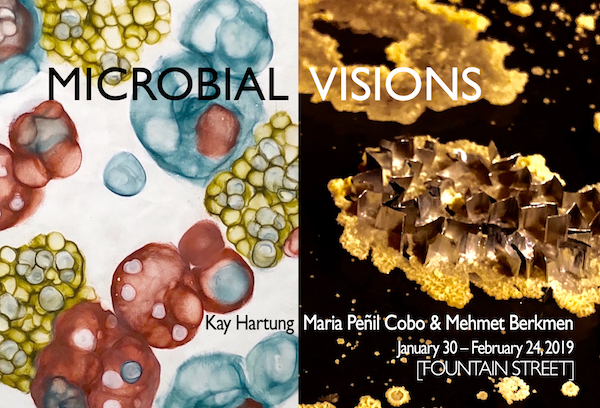 Postcard Front Microbial Visions 600.jpg