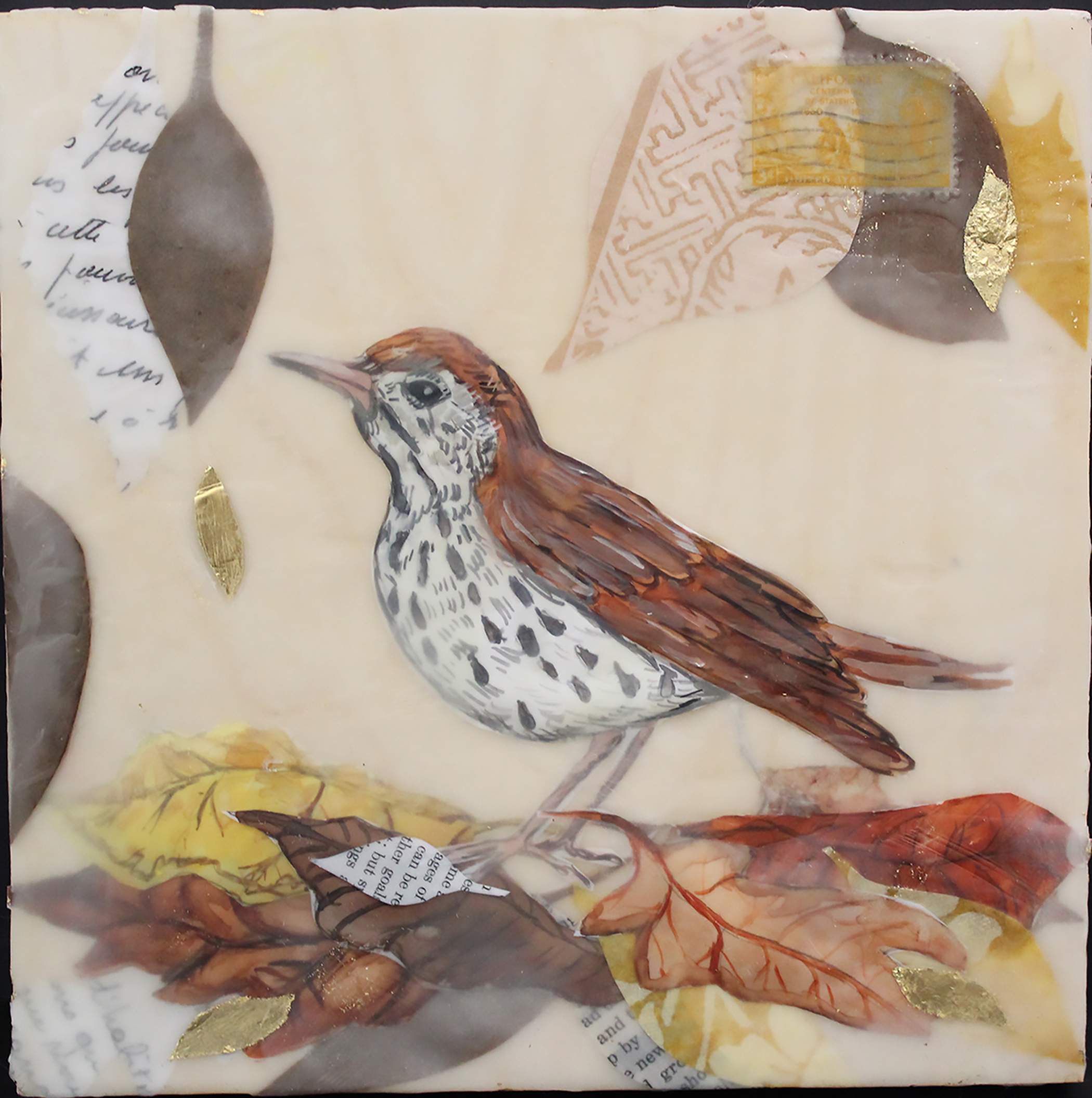The Deception of the Thrush , encaustic & mixed media, 8 x 8 inches
