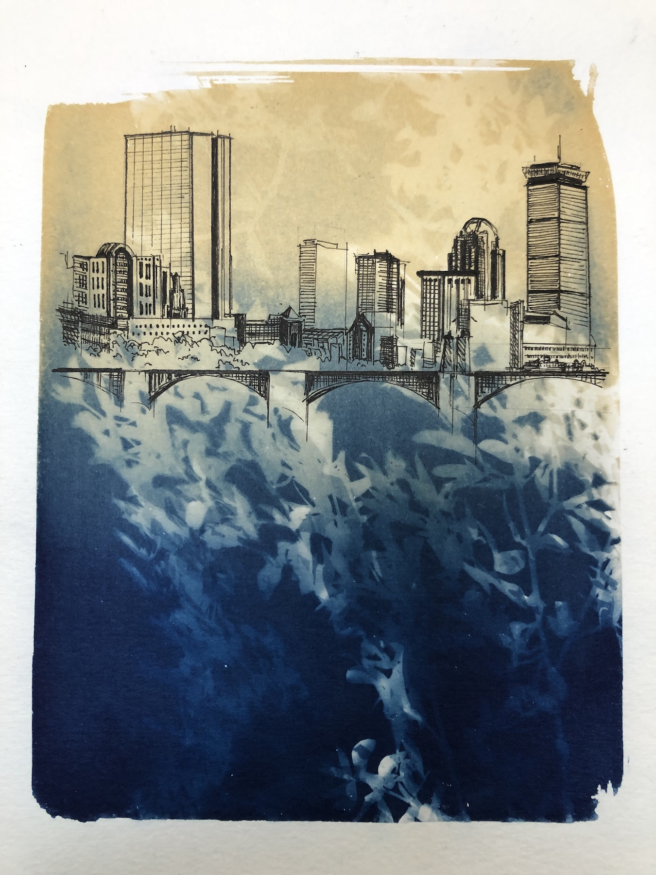 Marie Craig,  Entanglement (Boston sea level rise),  pen and ink on toned cyanotype photograph, 6 x 8 inches.