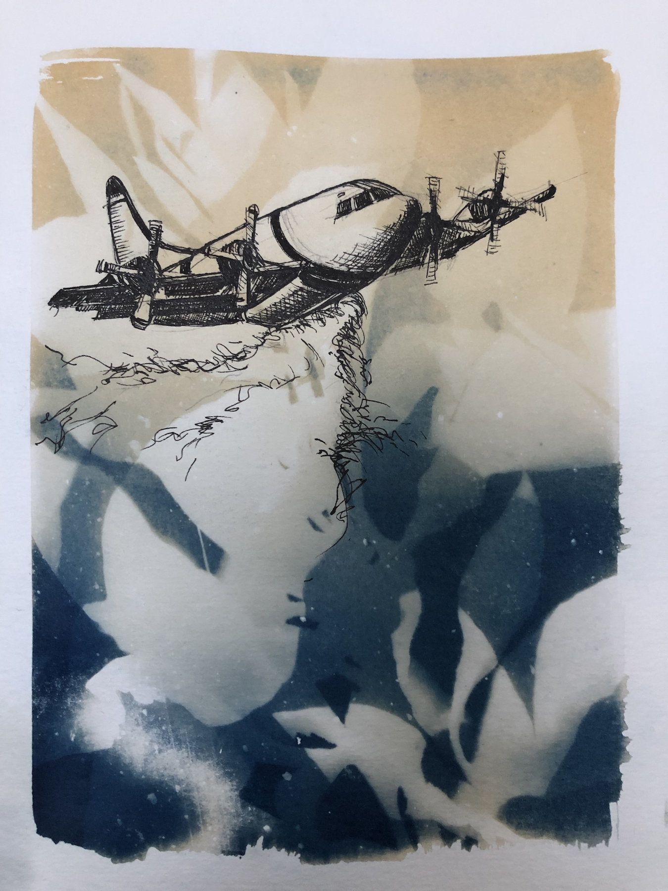 Marie Craig,  Entanglement 4 (fireplane),  pen and ink on toned cyanotype photograph, 6 x 8 inches.