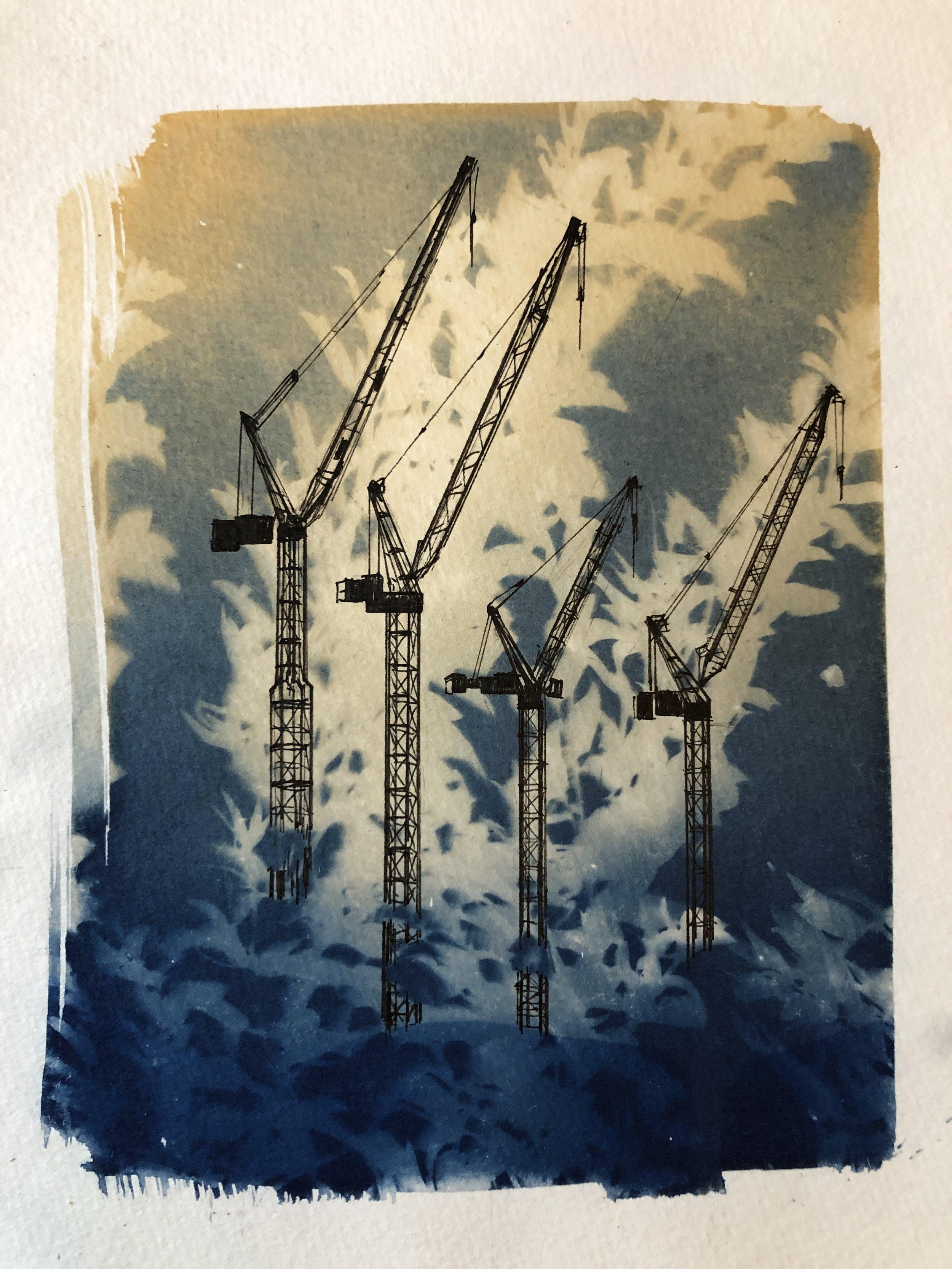 Craig_Entanglement 10 (cranes).jpg