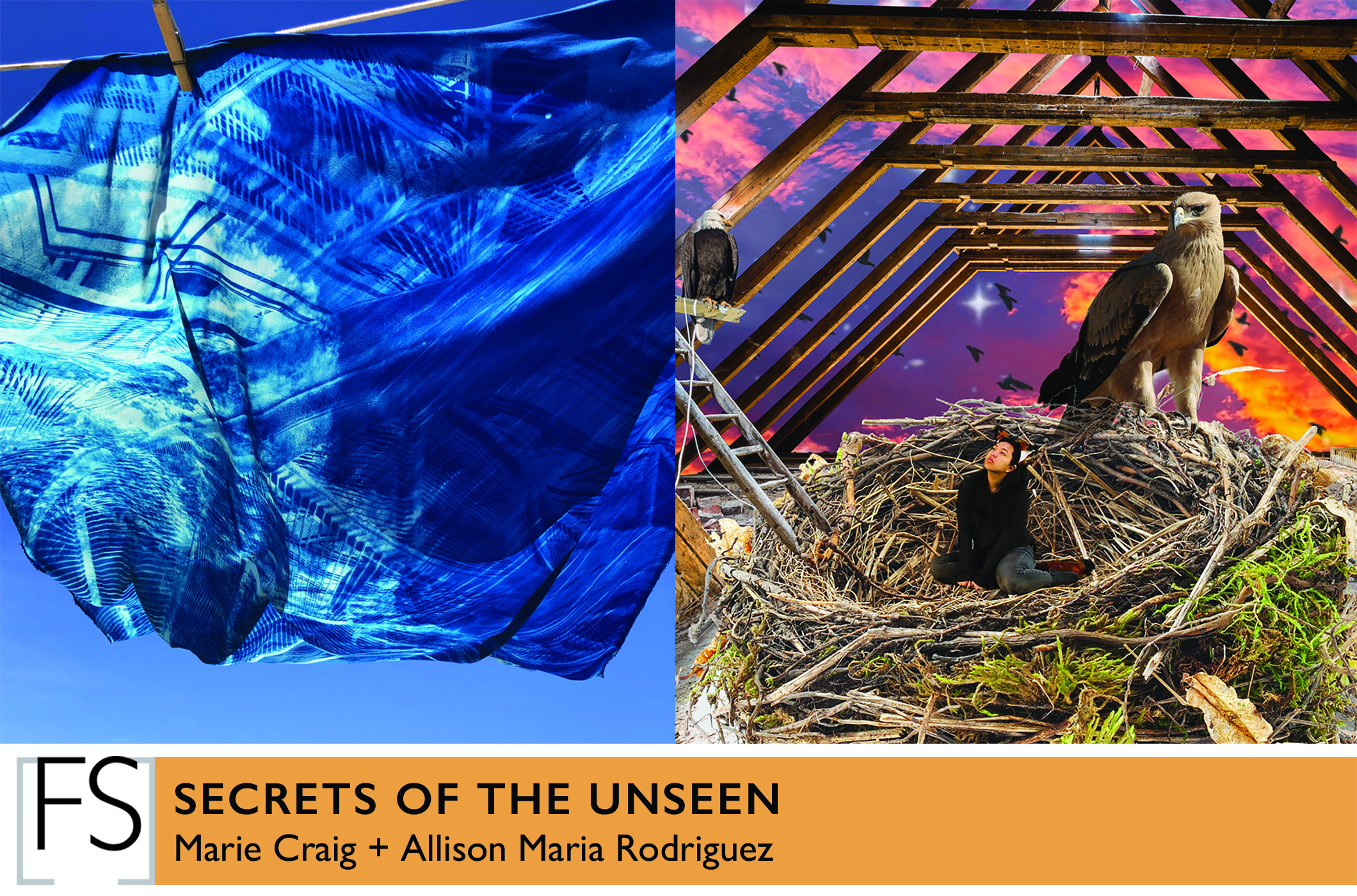 """Marie Craig and Allison Maria Rodriguez """"Secrets of the Unseen"""" at Fountain Street gallery."""