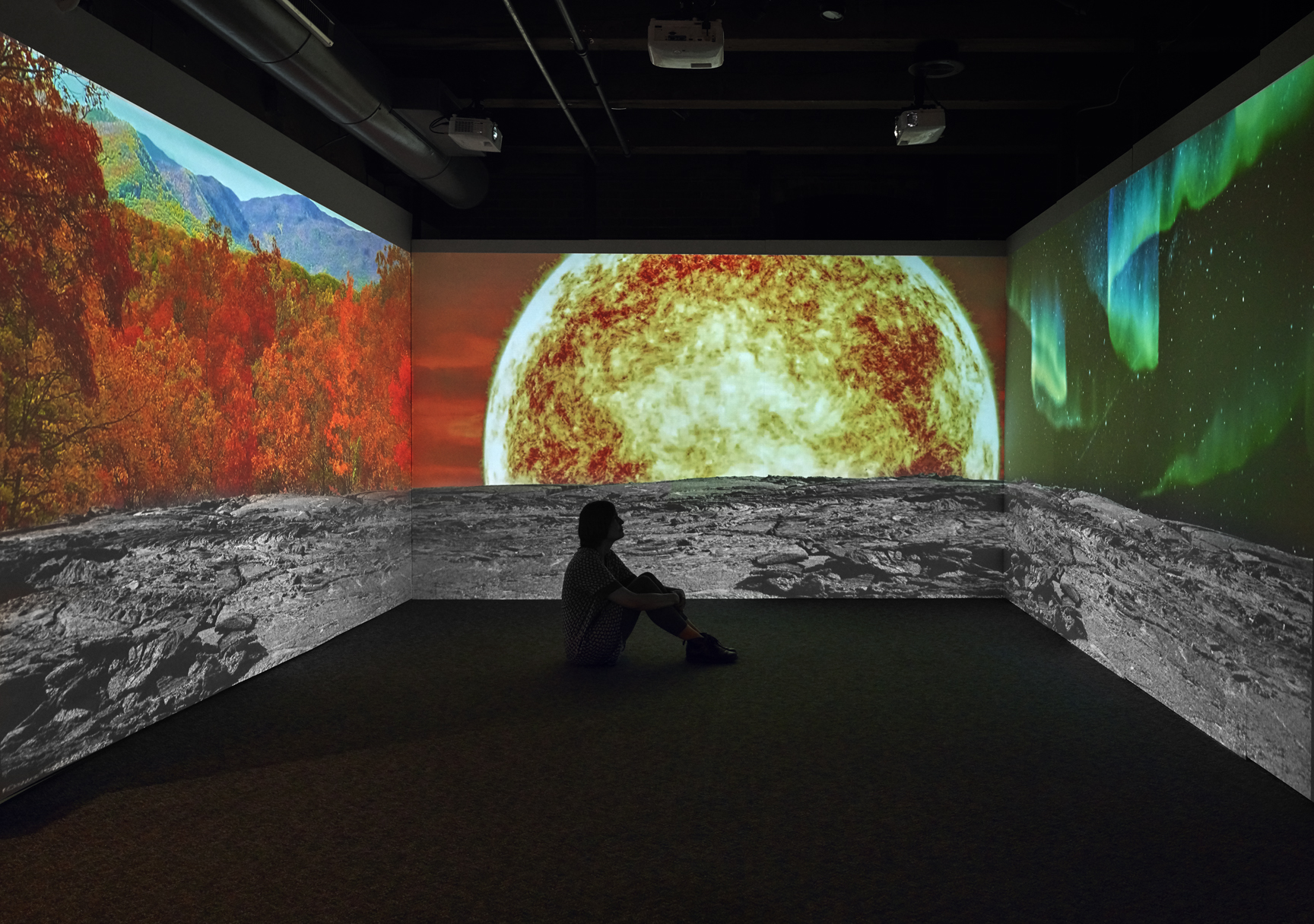 """Allison Maria Rodriguez is a first-generation Cuban-American interdisciplinary artist working predominately in video installation and new media. She creates immersive experiential spaces that challenge conventional ways of knowing and understanding the world. Her work focuses extensively on climate change, species extinction, and the interconnectivity of existence. See Rodriguez's most recent work in Fountain Street's May 2019 main gallery exhibition """" Secrets of the Unseen ."""""""