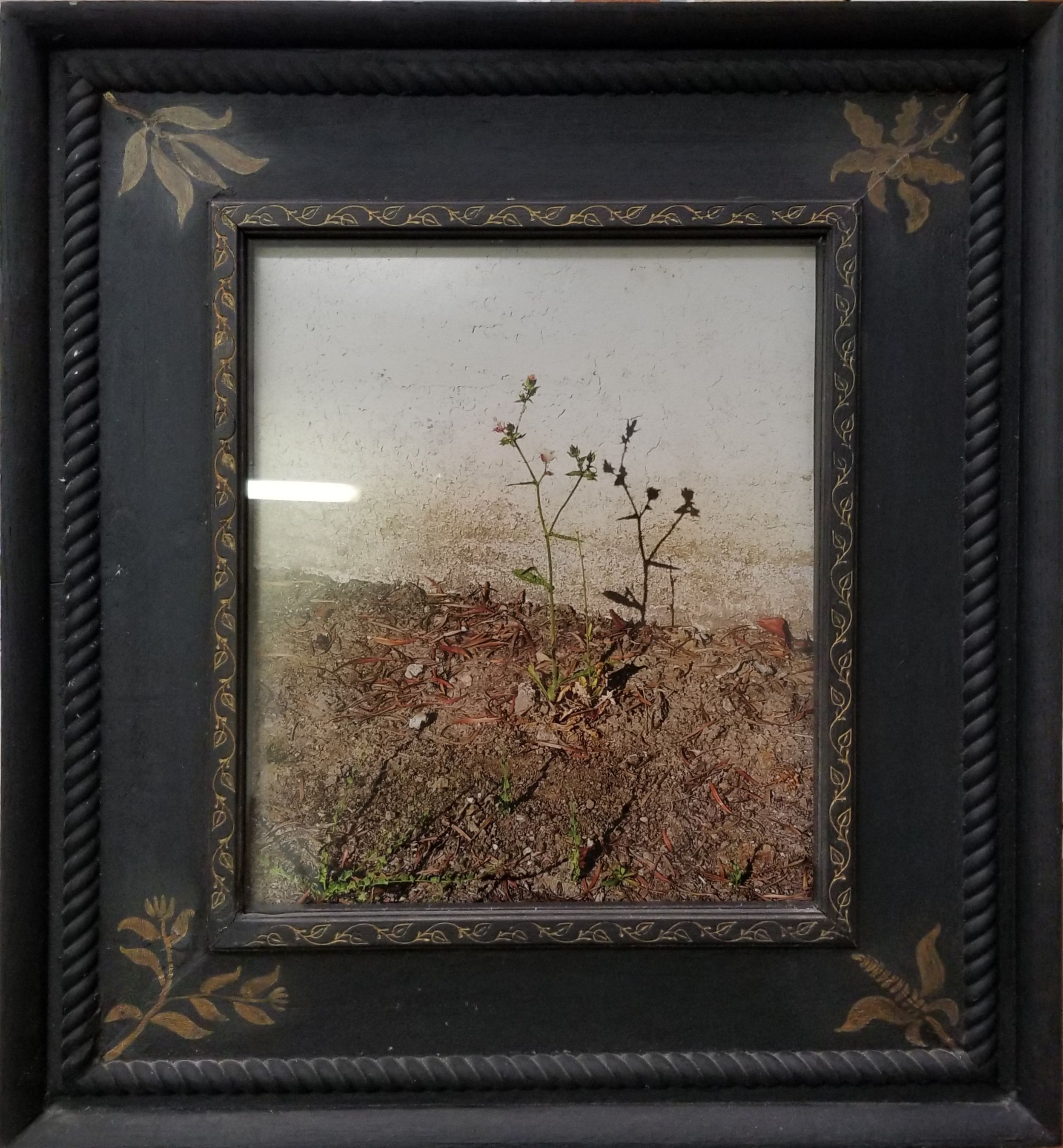 Jim Banks,  BOxT Photo Framed , Photo framed in homemade frame, 25x23