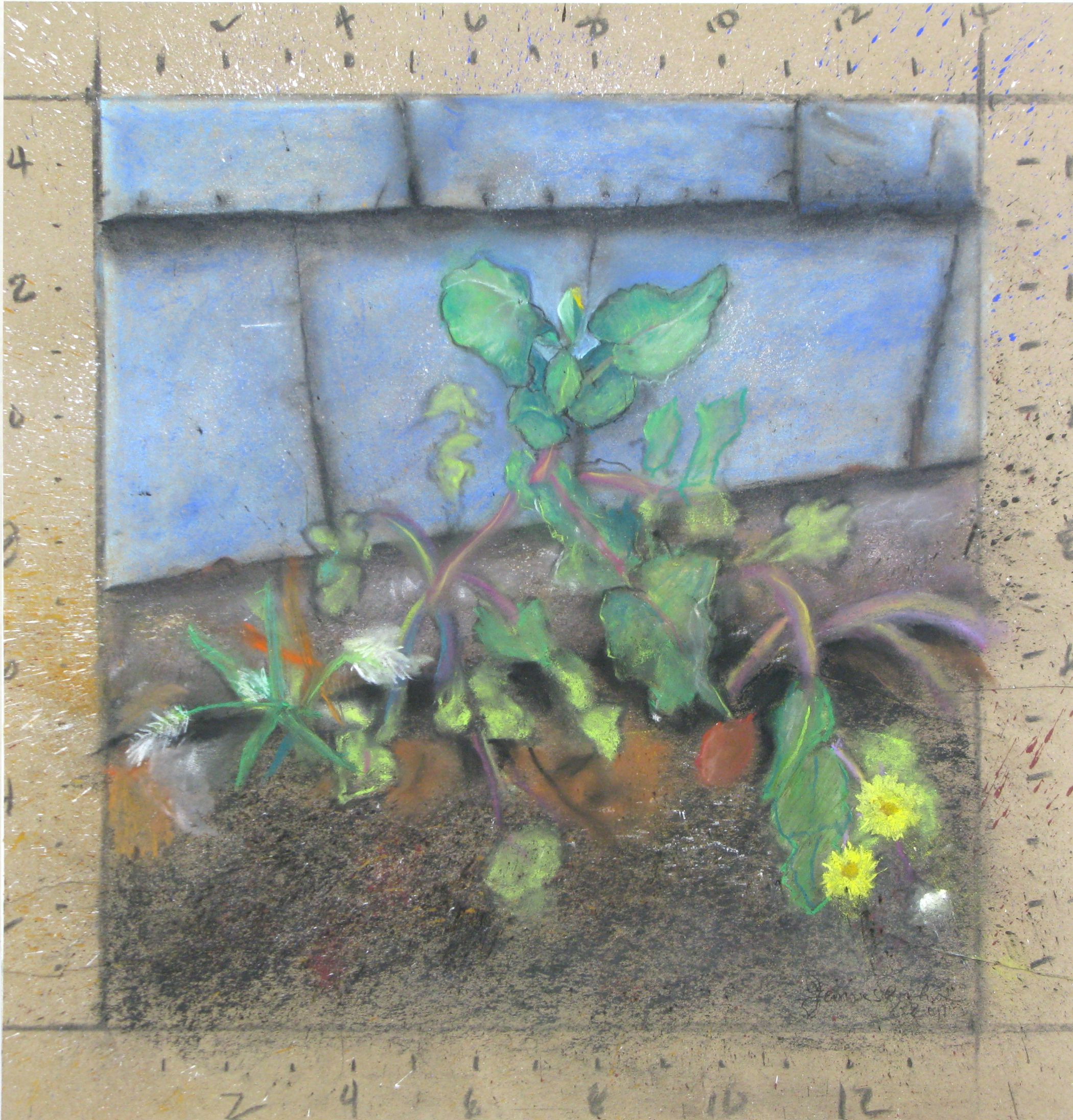 Jim Banks,  Thrive Where You're Planted , Pastel, gouache on paper, 18.5 x 17.5